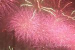 Image of fireworks representing the New Year for Scottish Kin