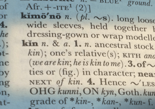 Image of dictionary showing definition of kin